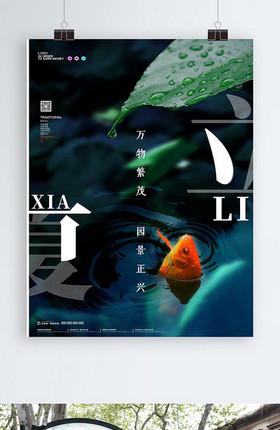 二十四传统节气大气锦鲤立夏海报