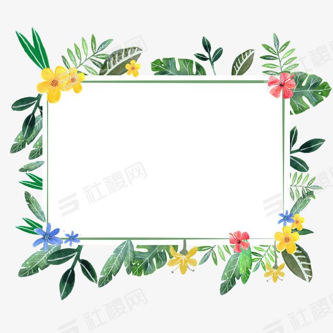 植物鲜花纹边框PNG
