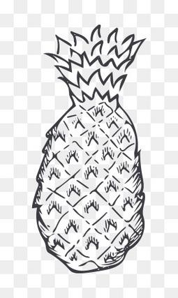 卡通菠萝水果