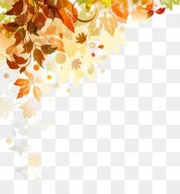 秋天落叶底纹