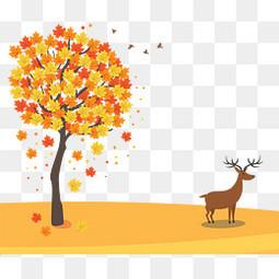 枫树落叶旁