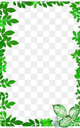 小清新绿叶树板绘边框