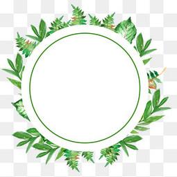 清新手绘植物边框
