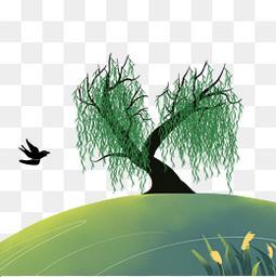 清明节绿色柳树
