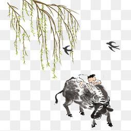 骑牛的小孩