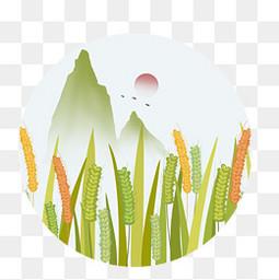 传统节气稻穗小满元素